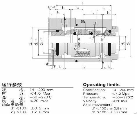 国际精密-H74D机械密封